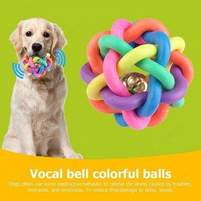 Karmy - корм для собак и кошек премиум класса! Новинки! №21 — Любимые игрушки для Ваших питомцев.. — Для животных