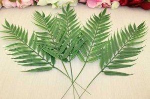 Листья робелини на проволоке 40 см, упак. 5 шт
