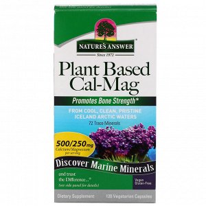 Nature&#x27 - s Answer, Cal-Mag на растительной основе, 500/250 мг, 120 вегетарианских капсул