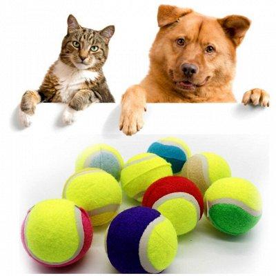 Зверьё Мое — корма, лакомства, аксессуары.  — Игрушки для кошек и собак — Игрушки