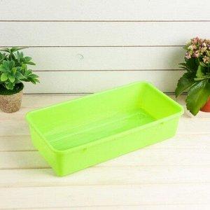 Ящик для рассады, 40 ? 20,5 ? 9,5 см, салатовый