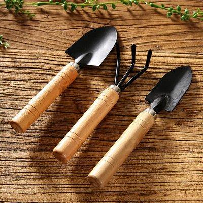 Здесь есть всё или почти. Стельки для обуви...  — Набор садовых инструментов — Садовые инструменты