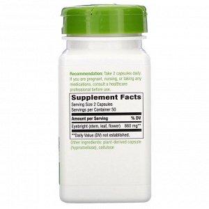 Nature&#x27 - s Way, Eyebright Herb, 860 mg, 100 Vegan Capsules
