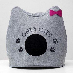 "Домик для животных из войлока ""Ушастик ONLY CATS"", 46 х 46 х 43 см"