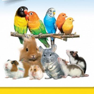 Зверьё Мое — корма, аксессуары, косметика — Для птиц и грызунов — Корма