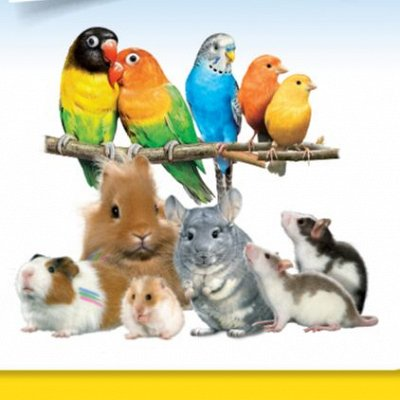 Зверьё Мое — корма, лакомства, аксессуары.  — Для птиц и грызунов — Корма
