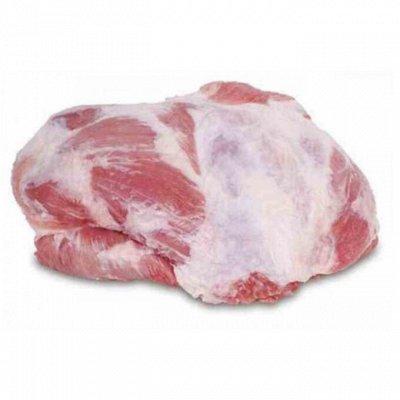 Свинина и говядина -77. Рагу 99 руб!    — Ягнятина и Баранина из Австралия — Баранина