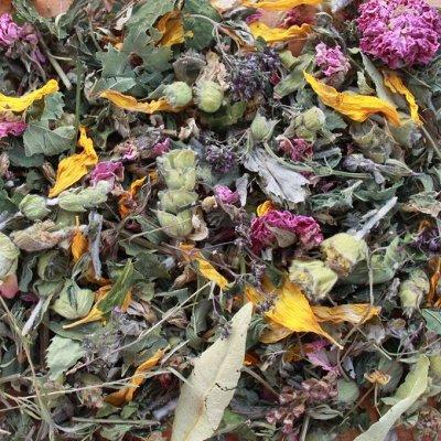 Крымские травы 💥 Кизил, полынь, мелиса и много других трав — Травы крымские  — Орехи, сухофрукты, чипсы