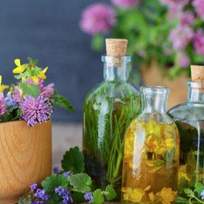 Крымские травы 💥 Кизил, полынь, мелиса и много других трав — Бальзамы — Диетические продукты