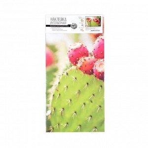 """Интерьерная наклейка """"Цветение кактуса"""" 60х90 см"""