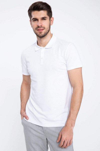 ,DFT — мужская одежда, шорты, футболки и поло, брюки джинсы — Футболки-поло 2