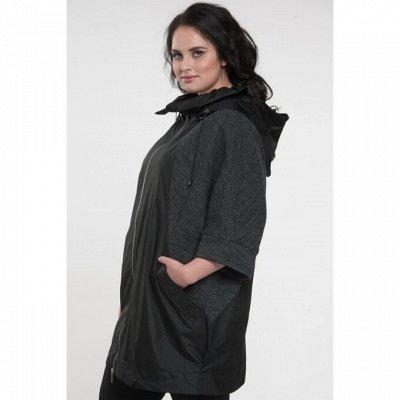 Модная одежда Plus-Size  — Куртки — Ветровки и легкие куртки