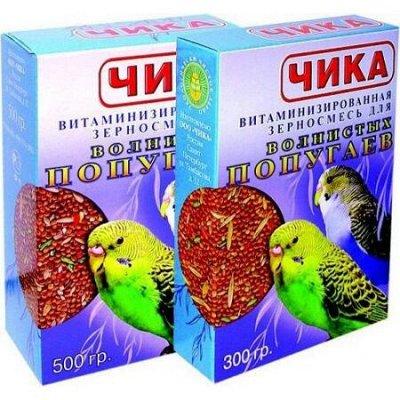ЗооДом, PROхвост, Probalance, OSSO — Корм, аксессуары для для птиц, грызунов и рыб — Корма