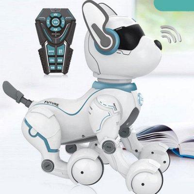 GerdaVlad 2020/9. Проводим время с пользой!  — Трансформеры, Бионика, Роботы — Роботы, воины и пираты