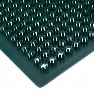 Покрытие ковровое щетинистое «Травка», 39?59 см, цвет тёмно-зелёный