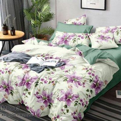 Анита 17 текстиль из Иваново - новинки + распродажа!   — Поплин Семейный — Семейные комплекты