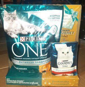 """Пополнение. """"Вкусные"""" скидки на вкусные товары  — Для кошек """"Супер Предложение"""" — Корма"""