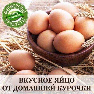 ФЕРМЕРСКИЙ МАГАЗИН. Натуральные продукты для вашей семьи — ЯЙЦО куриное ДОМАШНЕЕ — Яйца