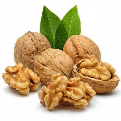 ✔Орехи, сухофрукты.НОВИНКИ ДЖЕКФРУТ,ГУАВА ВЬЕТНАМ😋 — Орешки в скорлупе! — Орехи