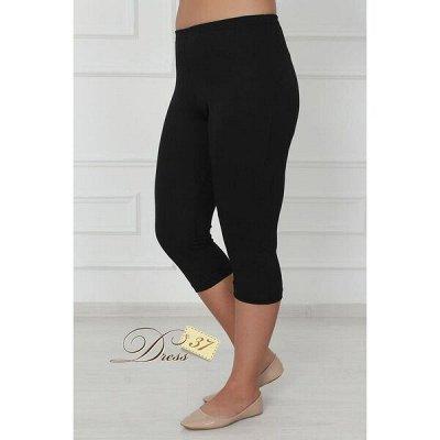 DRESS37 - доверяем трикотажу! От 42 до 66 размеров! — Бриджи, шорты — Бриджи и капри