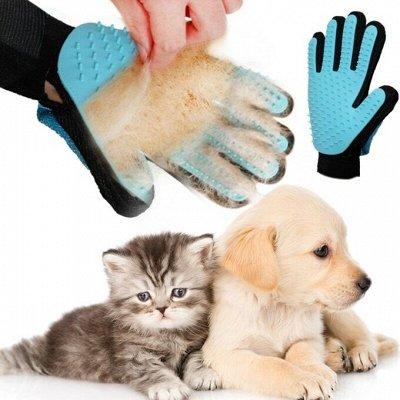 ☛Мега популярные товары! Умные часы, все для фитнеса! ☚    — Для животных! Варежка чесалка, когтерезка. — Для кошек