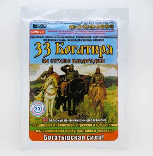 Уд 33 Богатыря почвооздаравливающ. микробиолг. препарат 1л  БК