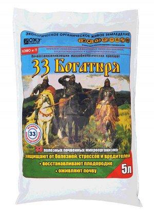 Уд 33 Богатыря почвооздаравливающ. микробиолг. препарат 5л БК