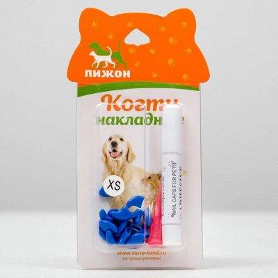 Пижон - для кошек - 20 — Аксессуары для груминга — Аксессуары