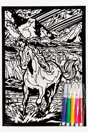 Раскраска бархатная с фломастерами 17,4*25 см (SF-5673) №2