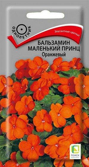 Бальзамин Маленький принц Оранжевый