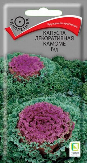 Капуста Декоративная Камоме Ред