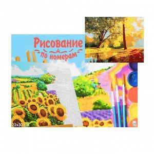 Картина по номерам на холсте 22 - 30 см «Красивый осенний парк»