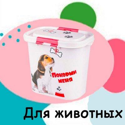 Московский пластик. Вся красота для Вашего дома — Для животных — Для кошек
