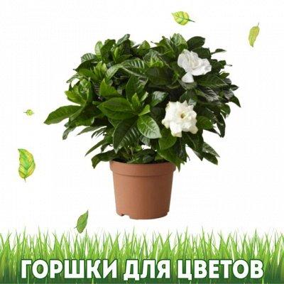 Дом, Сад, Огород - урожай на круглый год! — Горшки для цветов — Кашпо и горшки