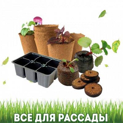 Дом, Сад, Огород - урожай на круглый год! — Все для рассады — Сад и огород