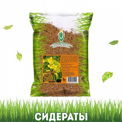 Дом, Сад, Огород - урожай на круглый год! — Сидераты — Удобрения и агрохимия