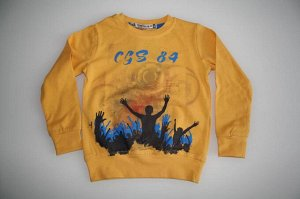 Толстовка 3684 жёлтый CEGISA