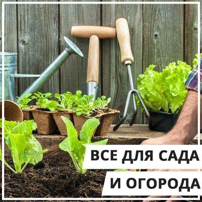 EuroДом - Все в одном! — Все для сада и огорода — Инструменты и инвентарь
