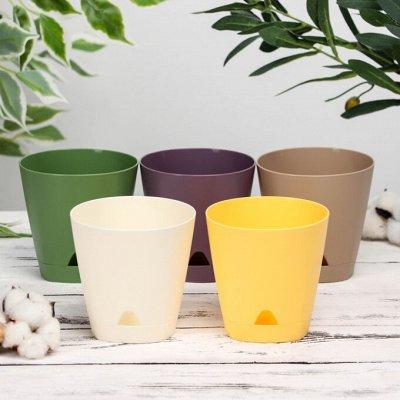 ЛЮБИМЫЕ БОКАЛЫ: Акция на посуду! Всем подарок за заказ🎁! — Кашпо/горшки для цветов — Кашпо и горшки