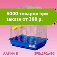 264818870