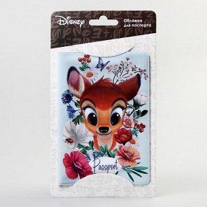 Паспортная обложка, Disney
