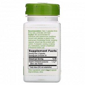 Nature&#x27 - s Way, Echinacea Purpurea Herb, 1,200 mg, 100 Vegan Capsules