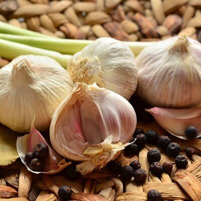 Огромная распродажа семян! +Предзаказ крутого чеснока и лука — Чеснок — Семена овощей