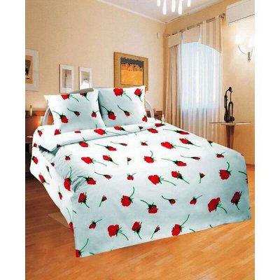Ивановский текстиль - любимая! Новогодняя коллекция! — Простыни - 1,5-спальные — Простыни