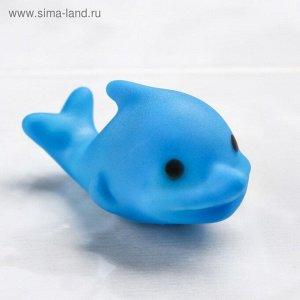 Игрушка для ванны «Дельфинчик»