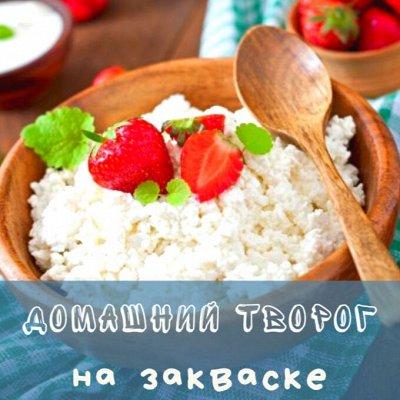Приготовить СВОЙ ЙОГУРТ-легко! 1 пакетик=3 литра йогурта!-2 — Закваски - творог — Сметана и творог