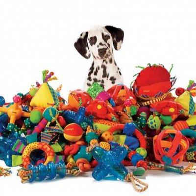 Мир упаковки - для всех. Акция на туалетную бумагу!  — Игрушки для собак — Игрушки
