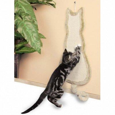 Мир упаковки - для всех. Акция на туалетную бумагу! — Когтеточки для кошек — Когтеточки