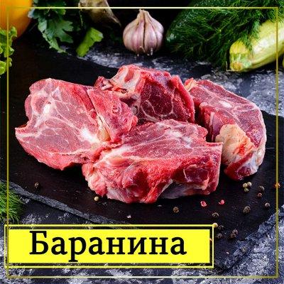 Мясная лавка! Курочка! Мясо! Овощи! Креветка от 329 рублей! — Баранина и Ягненок — Баранина