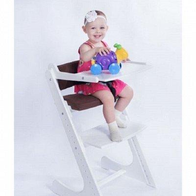 🔥 СКИДКА на Ǩонёк-ГорбунёǨ™_Растущий стул с 6-ти месяцев-14